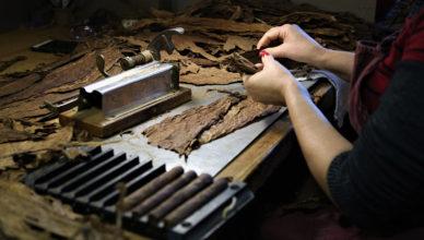 Crux Cigars